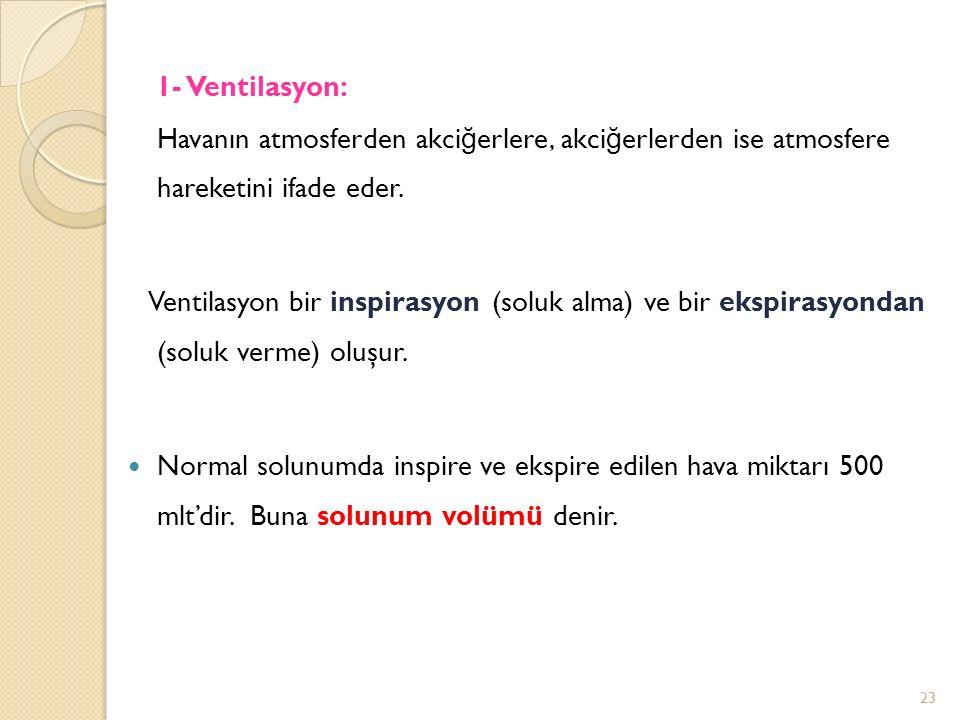 1- Ventilasyon: Havanın atmosferden akci ğ erlere, akci ğ erlerden ise atmosfere hareketini ifade eder.