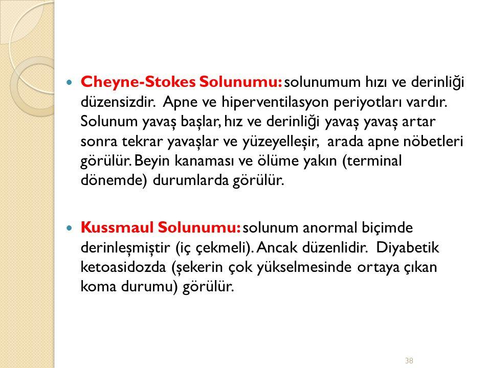 Cheyne-Stokes Solunumu: solunumum hızı ve derinli ğ i düzensizdir.