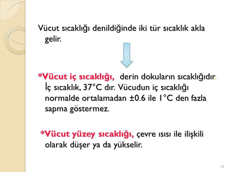 Vücut sıcaklı ğ ı denildi ğ inde iki tür sıcaklık akla gelir.