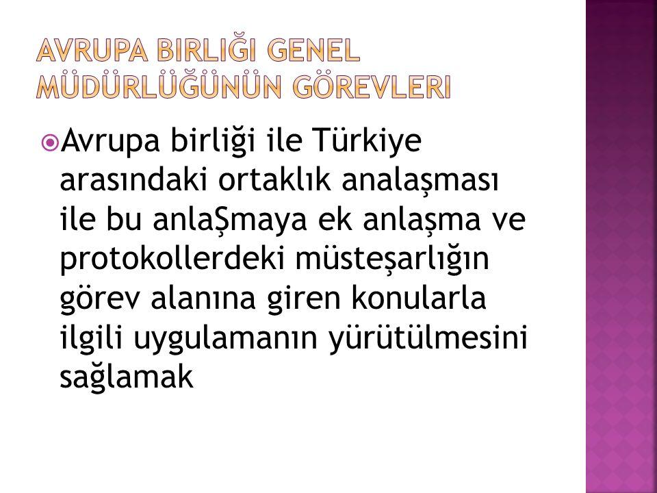 Avrupa birliği ile Türkiye arasındaki ortaklık analaşması ile bu anlaŞmaya ek anlaşma ve protokollerdeki müsteşarlığın görev alanına giren konularla
