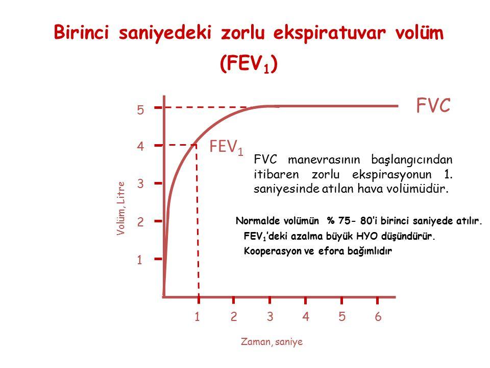 Birinci saniyedeki zorlu ekspiratuvar volüm (FEV 1 ) 123456 1 2 3 4 Volüm, Litre Zaman, saniye FVC 5 FEV 1 FVC manevrasının başlangıcından itibaren zo