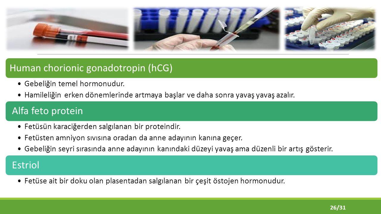 Human chorionic gonadotropin (hCG) Gebeliğin temel hormonudur.