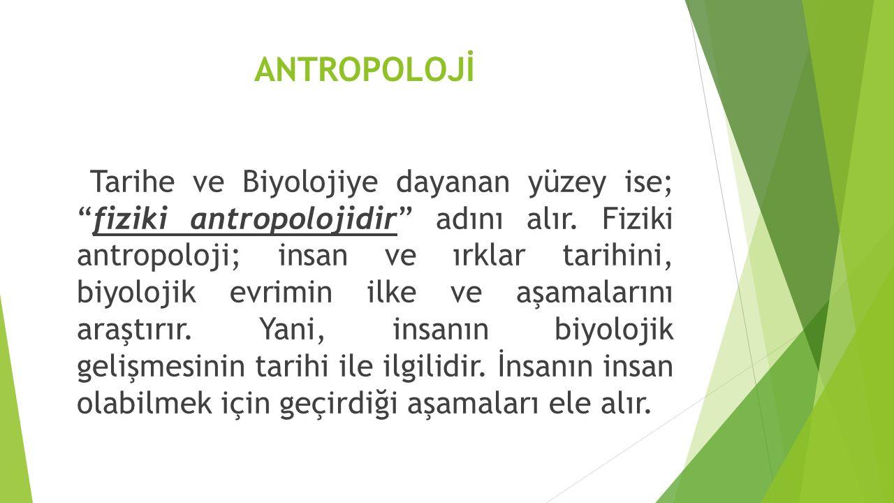ANTROPOLOJİ Tarihe ve Biyolojiye dayanan yüzey ise; fiziki antropolojidir adını alır.