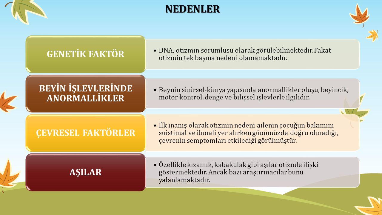 NEDENLER DNA, otizmin sorumlusu olarak görülebilmektedir.