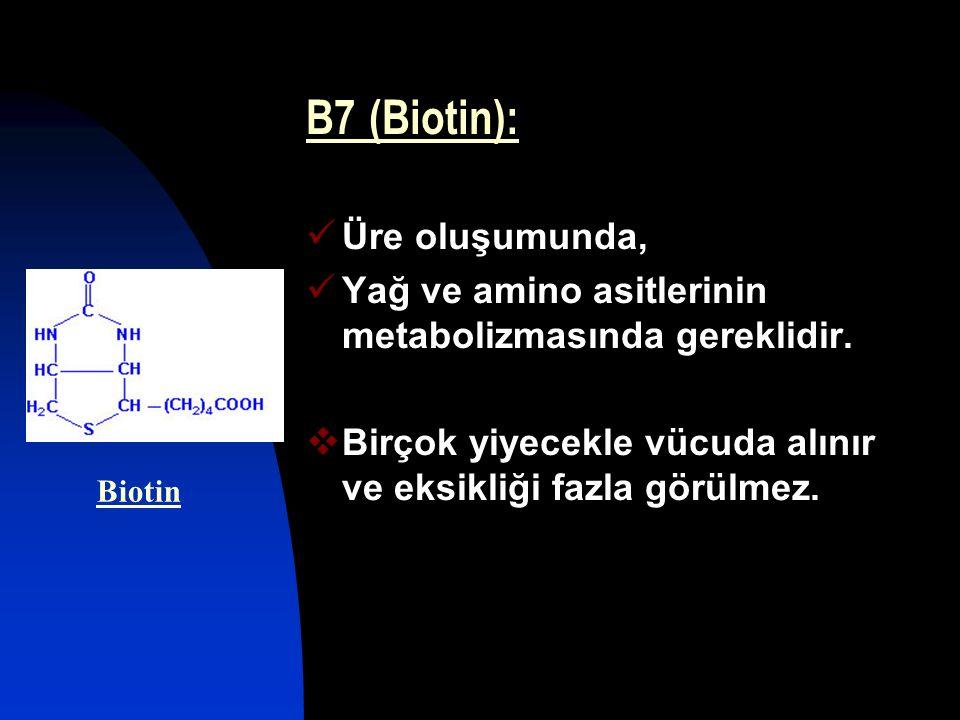 B7 (Biotin): Üre oluşumunda, Yağ ve amino asitlerinin metabolizmasında gereklidir.  Birçok yiyecekle vücuda alınır ve eksikliği fazla görülmez. Bioti