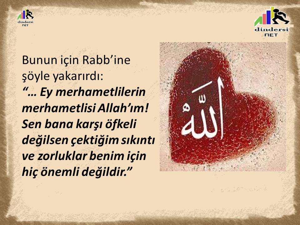 """Bunun için Rabb'ine şöyle yakarırdı: """"… Ey merhametlilerin merhametlisi Allah'ım! Sen bana karşı öfkeli değilsen çektiğim sıkıntı ve zorluklar benim i"""