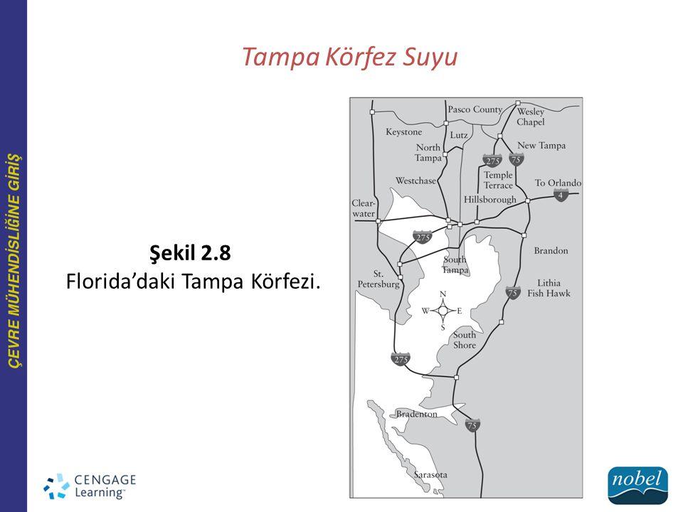 Tampa Körfez Suyu Şekil 2.8 Florida'daki Tampa Körfezi.