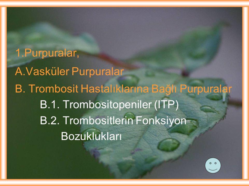1.Purpuralar, A.Vasküler Purpuralar B. Trombosit Hastalıklarına Bağlı Purpuralar B.1. Trombositopeniler (ITP) B.2. Trombositlerin Fonksiyon Bozuklukla