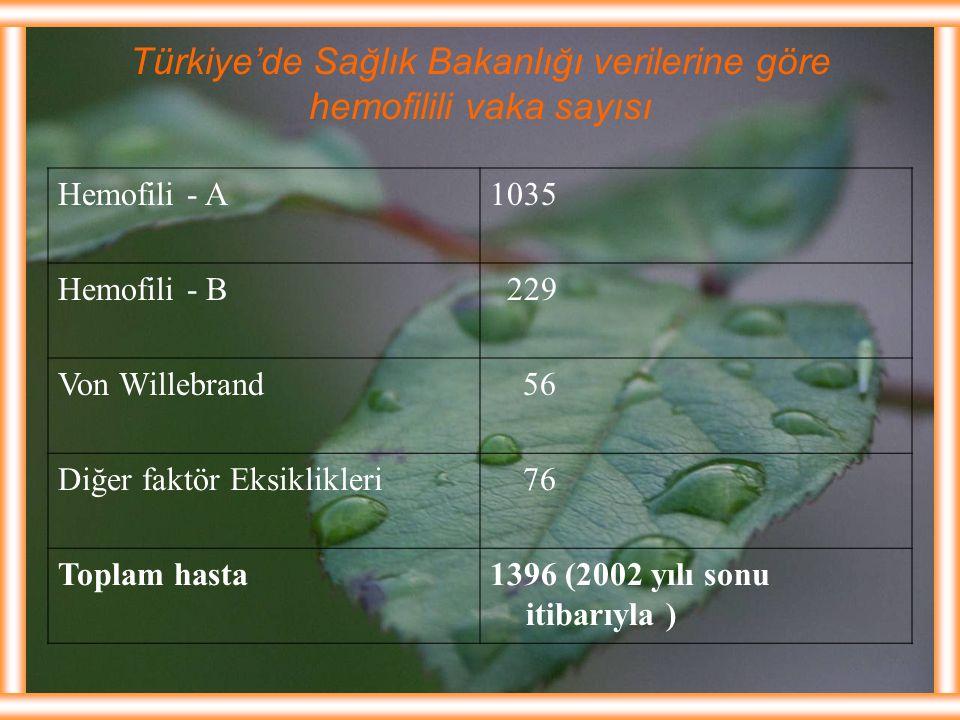 Türkiye'de Sağlık Bakanlığı verilerine göre hemofilili vaka sayısı Hemofili - A1035 Hemofili - B 229 Von Willebrand 56 Diğer faktör Eksiklikleri 76 To
