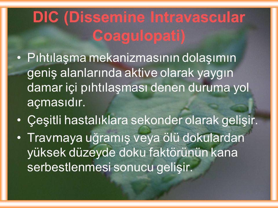 DIC (Dissemine Intravascular Coagulopati) Pıhtılaşma mekanizmasının dolaşımın geniş alanlarında aktive olarak yaygın damar içi pıhtılaşması denen duru