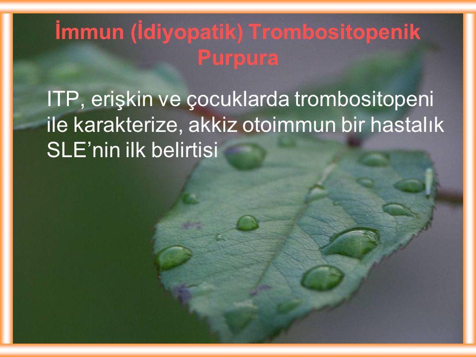 İmmun (İdiyopatik) Trombositopenik Purpura ITP, erişkin ve çocuklarda trombositopeni ile karakterize, akkiz otoimmun bir hastalık SLE'nin ilk belirtis
