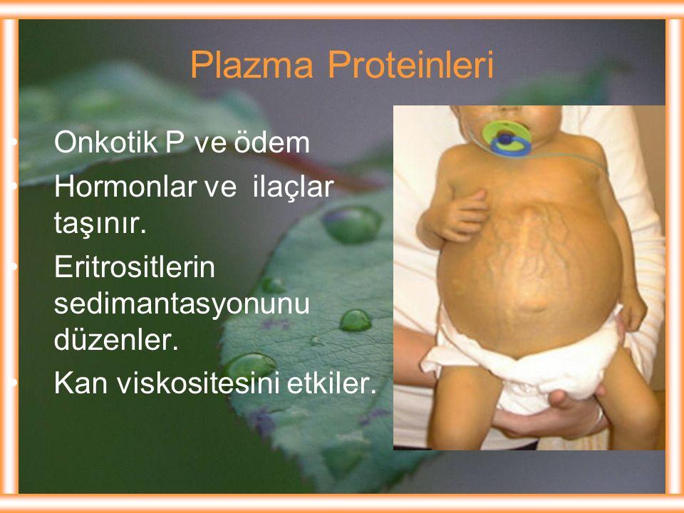 Plazma Proteinleri Onkotik P ve ödem Hormonlar ve ilaçlar taşınır. Eritrositlerin sedimantasyonunu düzenler. Kan viskositesini etkiler.