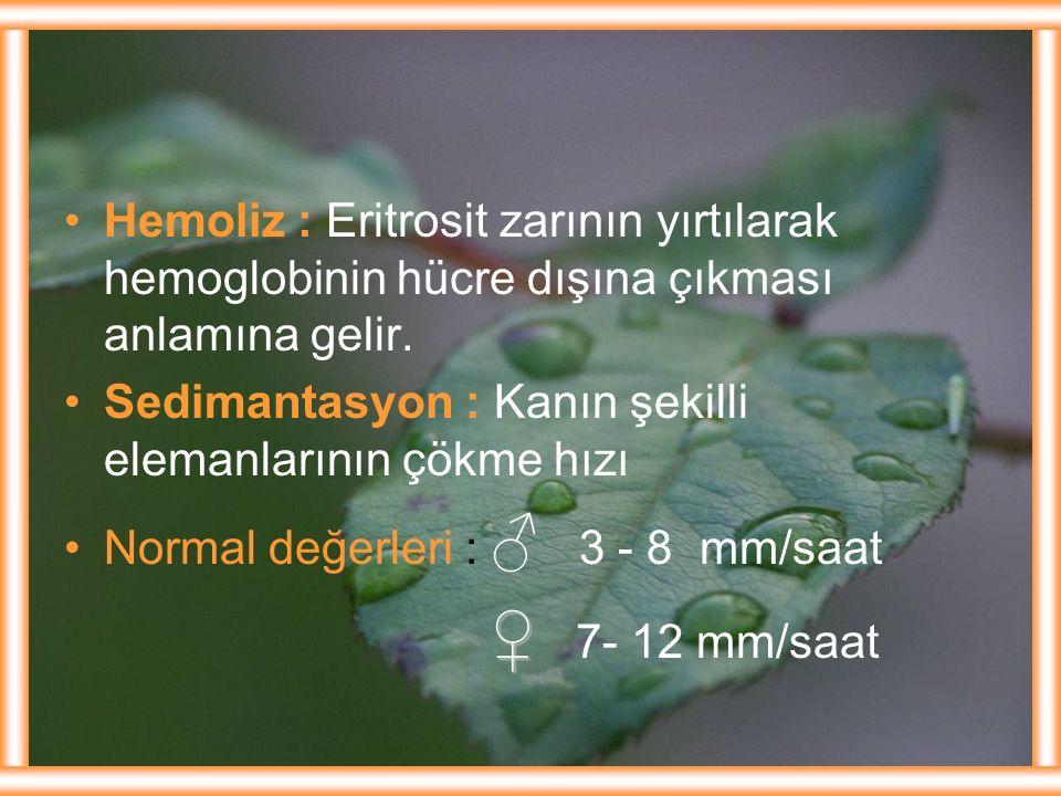 Hemoliz : Eritrosit zarının yırtılarak hemoglobinin hücre dışına çıkması anlamına gelir. Sedimantasyon : Kanın şekilli elemanlarının çökme hızı Normal