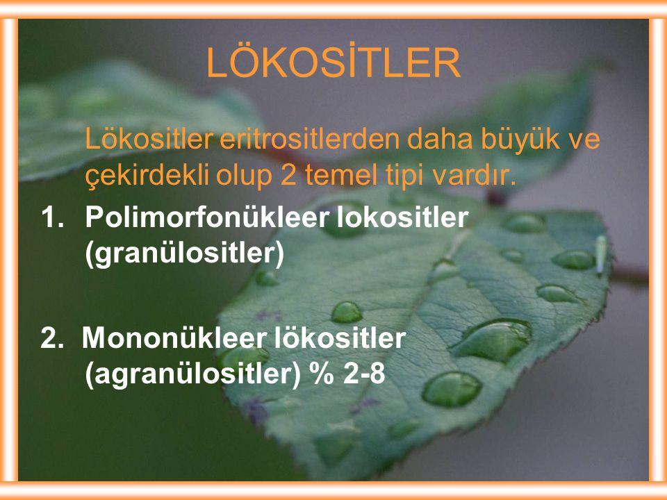 Lökositler eritrositlerden daha büyük ve çekirdekli olup 2 temel tipi vardır. 1.Polimorfonükleer lokositler (granülositler) 2. Mononükleer lökositler
