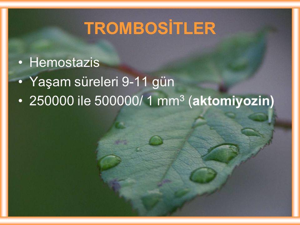 TROMBOSİTLER Hemostazis Yaşam süreleri 9-11 gün 250000 ile 500000/ 1 mm 3 (aktomiyozin)