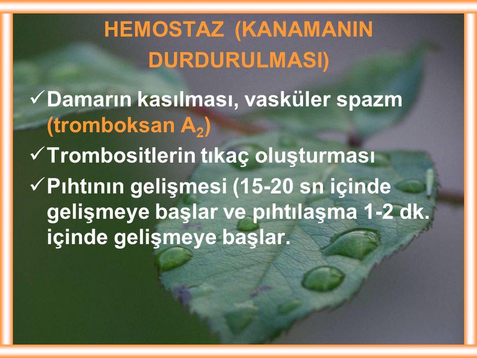 HEMOSTAZ (KANAMANIN DURDURULMASI) Damarın kasılması, vasküler spazm (tromboksan A 2 ) Trombositlerin tıkaç oluşturması Pıhtının gelişmesi (15-20 sn iç