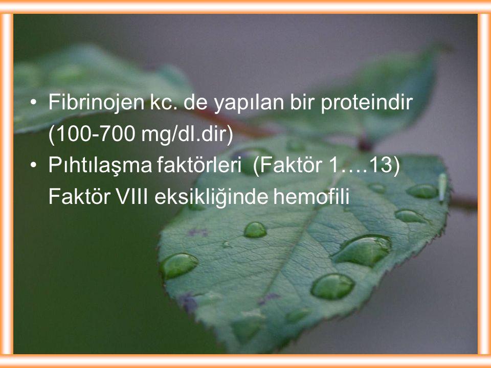 Fibrinojen kc. de yapılan bir proteindir (100-700 mg/dl.dir) Pıhtılaşma faktörleri (Faktör 1….13) Faktör VIII eksikliğinde hemofili