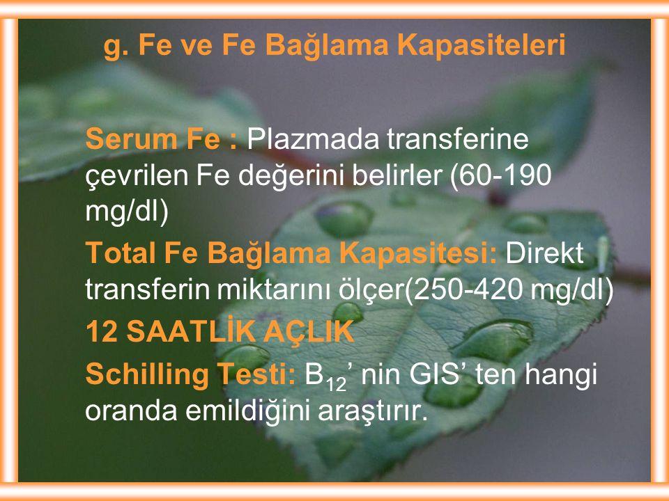g. Fe ve Fe Bağlama Kapasiteleri Serum Fe : Plazmada transferine çevrilen Fe değerini belirler (60-190 mg/dl) Total Fe Bağlama Kapasitesi: Direkt tran