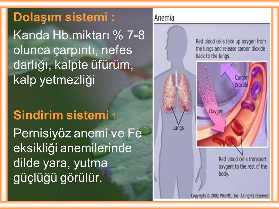 Dolaşım sistemi : Kanda Hb.miktarı % 7-8 olunca çarpıntı, nefes darlığı, kalpte üfürüm, kalp yetmezliği Sindirim sistemi : Pernisiyöz anemi ve Fe eksi