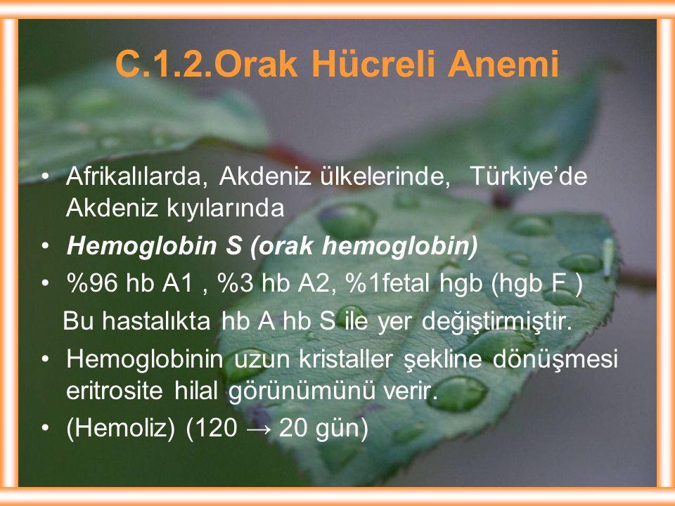 C.1.2.Orak Hücreli Anemi Afrikalılarda, Akdeniz ülkelerinde, Türkiye'de Akdeniz kıyılarında Hemoglobin S (orak hemoglobin) %96 hb A1, %3 hb A2, %1feta