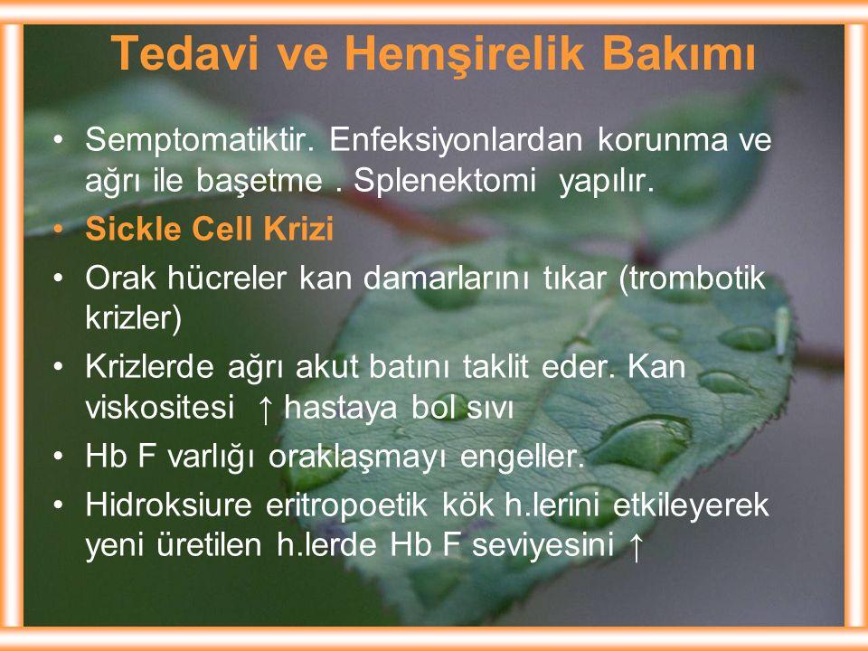 Tedavi ve Hemşirelik Bakımı Semptomatiktir. Enfeksiyonlardan korunma ve ağrı ile başetme. Splenektomi yapılır. Sickle Cell Krizi Orak hücreler kan dam