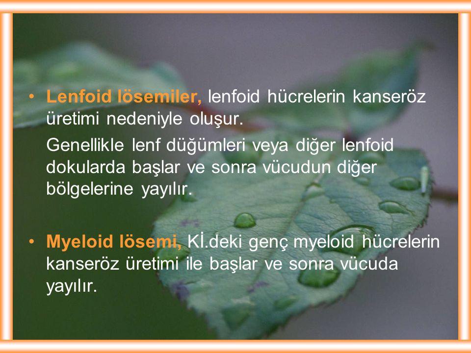 Lenfoid lösemiler, lenfoid hücrelerin kanseröz üretimi nedeniyle oluşur. Genellikle lenf düğümleri veya diğer lenfoid dokularda başlar ve sonra vücudu