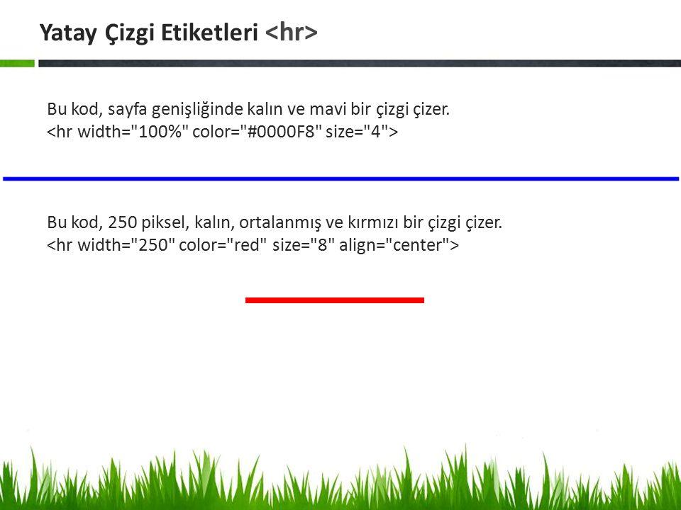 Bu kod, sayfa genişliğinde kalın ve mavi bir çizgi çizer. Bu kod, 250 piksel, kalın, ortalanmış ve kırmızı bir çizgi çizer. Yatay Çizgi Etiketleri
