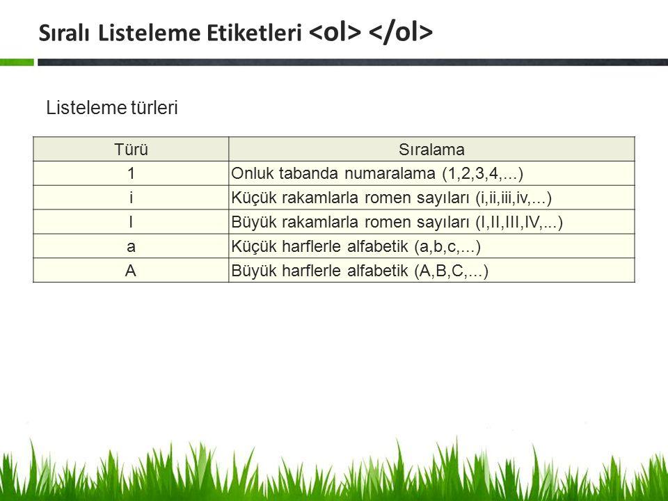 Listeleme türleri Sıralı Listeleme Etiketleri TürüSıralama 1Onluk tabanda numaralama (1,2,3,4,...) iKüçük rakamlarla romen sayıları (i,ii,iii,iv,...)