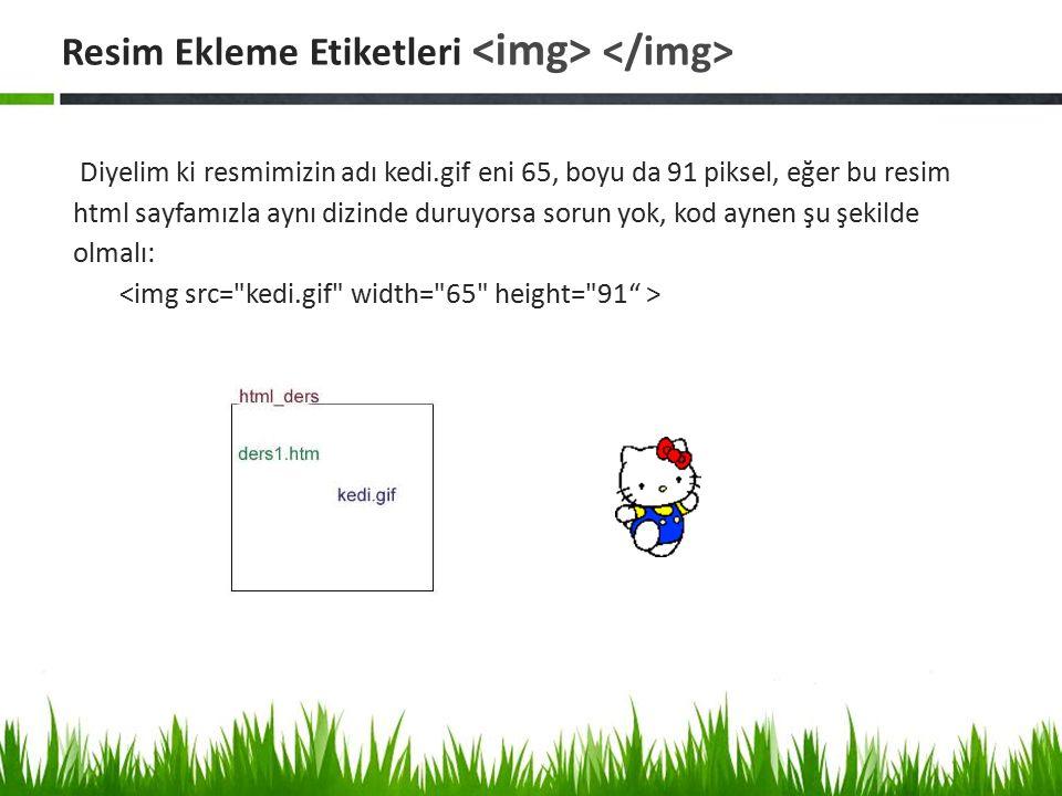 Diyelim ki resmimizin adı kedi.gif eni 65, boyu da 91 piksel, eğer bu resim html sayfamızla aynı dizinde duruyorsa sorun yok, kod aynen şu şekilde olm