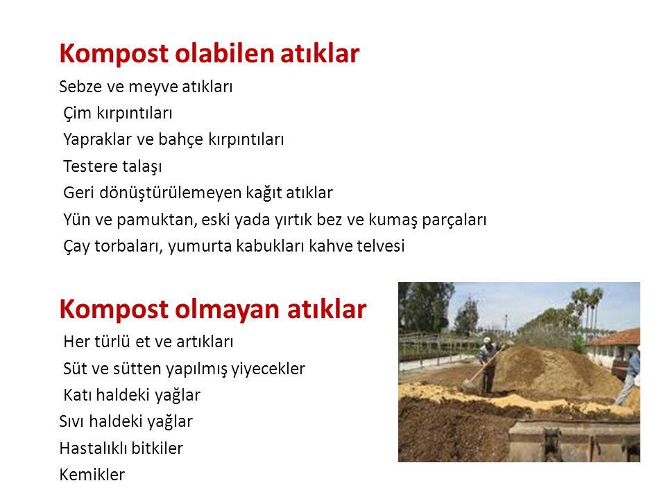 Kompost olabilen atıklar Sebze ve meyve atıkları Çim kırpıntıları Yapraklar ve bahçe kırpıntıları Testere talaşı Geri dönüştürülemeyen kağıt atıklar Y
