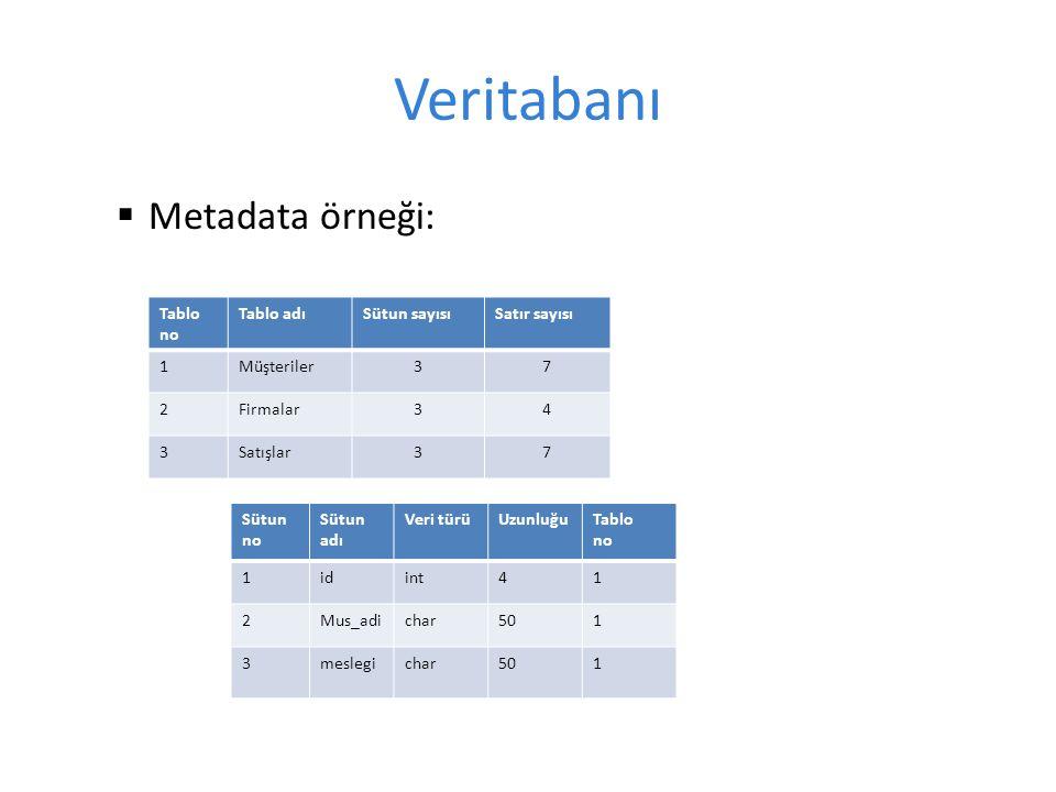 Veritabanı  Metadata örneği: Tablo no Tablo adıSütun sayısıSatır sayısı 1Müşteriler37 2Firmalar34 3Satışlar37 Sütun no Sütun adı Veri türüUzunluğuTablo no 1idint41 2Mus_adichar501 3meslegichar501