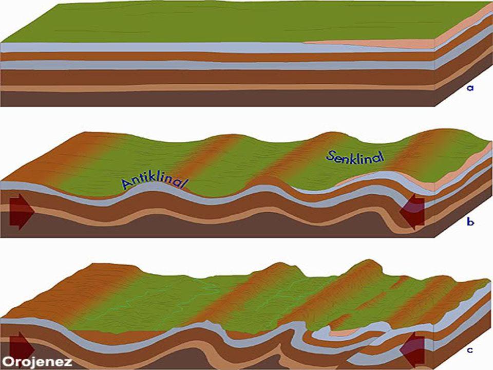Kıvrılma olayı sonucu oluşan dağlar Türkiye'de yer alan dağların önemli bir kısmı Alp orojenezi ile meydana gelmiştir.