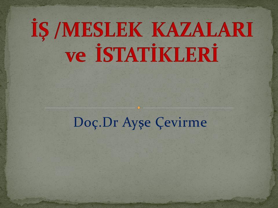 Doç.Dr Ayşe Çevirme