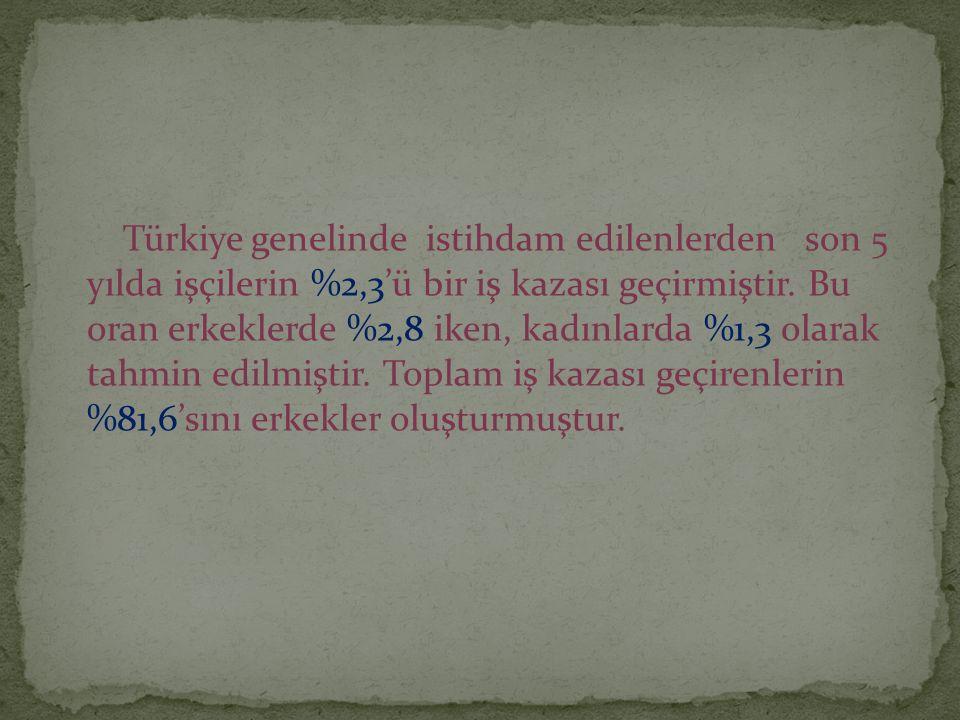 Türkiye genelinde istihdam edilenlerden son 5 yılda işçilerin %2,3'ü bir iş kazası geçirmiştir. Bu oran erkeklerde %2,8 iken, kadınlarda %1,3 olarak t
