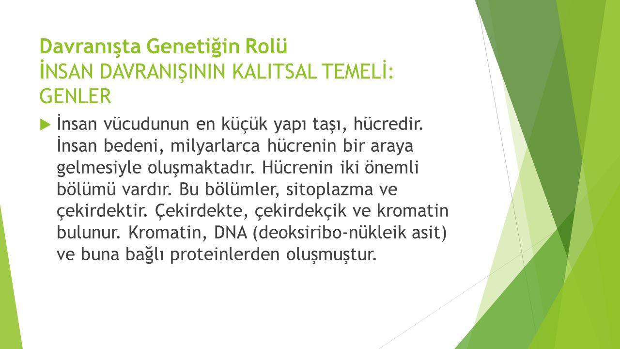 Davranışta Genetiğin Rolü İNSAN DAVRANIŞININ KALITSAL TEMELİ: GENLER  İnsan vücudunun en küçük yapı taşı, hücredir.