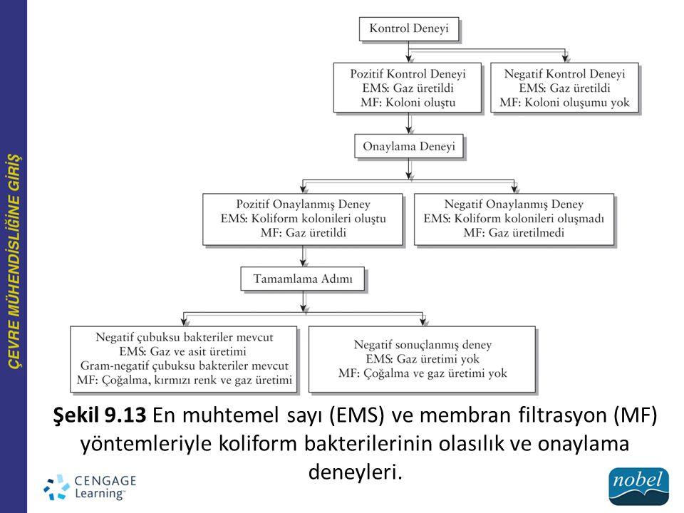 Şekil 9.13 En muhtemel sayı (EMS) ve membran filtrasyon (MF) yöntemleriyle koliform bakterilerinin olasılık ve onaylama deneyleri.