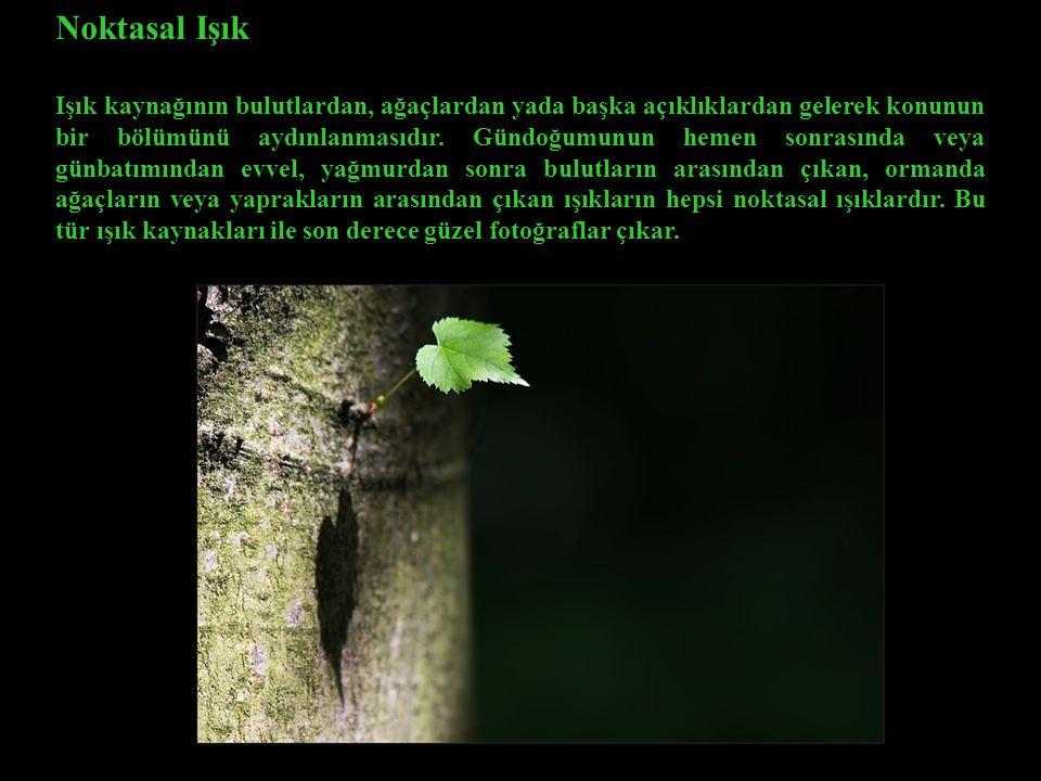 Noktasal Işık Işık kaynağının bulutlardan, ağaçlardan yada başka açıklıklardan gelerek konunun bir bölümünü aydınlanmasıdır.