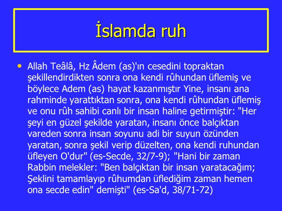 İslamda ruh Allah Teâlâ, Hz Âdem (as)'ın cesedini topraktan şekillendirdikten sonra ona kendi rûhundan üflemiş ve böylece Adem (as) hayat kazanmıştır