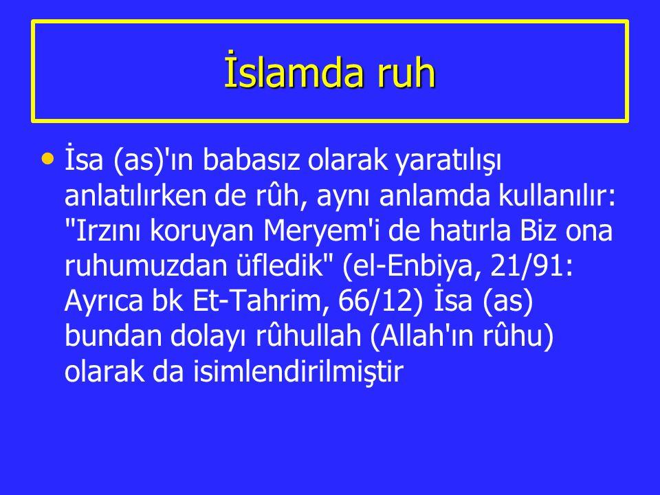 İslamda ruh İsa (as)'ın babasız olarak yaratılışı anlatılırken de rûh, aynı anlamda kullanılır: