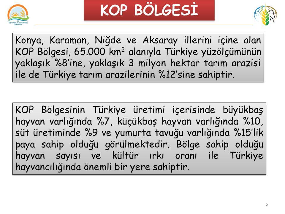 5 Konya, Karaman, Niğde ve Aksaray illerini içine alan KOP Bölgesi, 65.000 km 2 alanıyla Türkiye yüzölçümünün yaklaşık %8'ine, yaklaşık 3 milyon hektar tarım arazisi ile de Türkiye tarım arazilerinin %12'sine sahiptir.