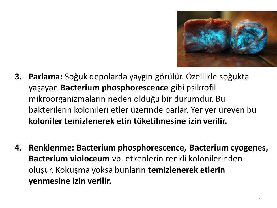 3.Parlama: Soğuk depolarda yaygın görülür. Özellikle soğukta yaşayan Bacterium phosphorescence gibi psikrofil mikroorganizmaların neden olduğu bir dur