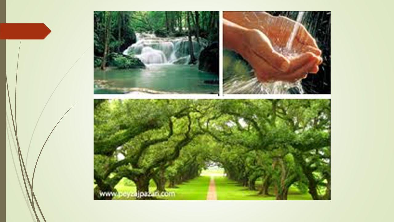 Kaynak ve Doğal Kaynak Nedir?.