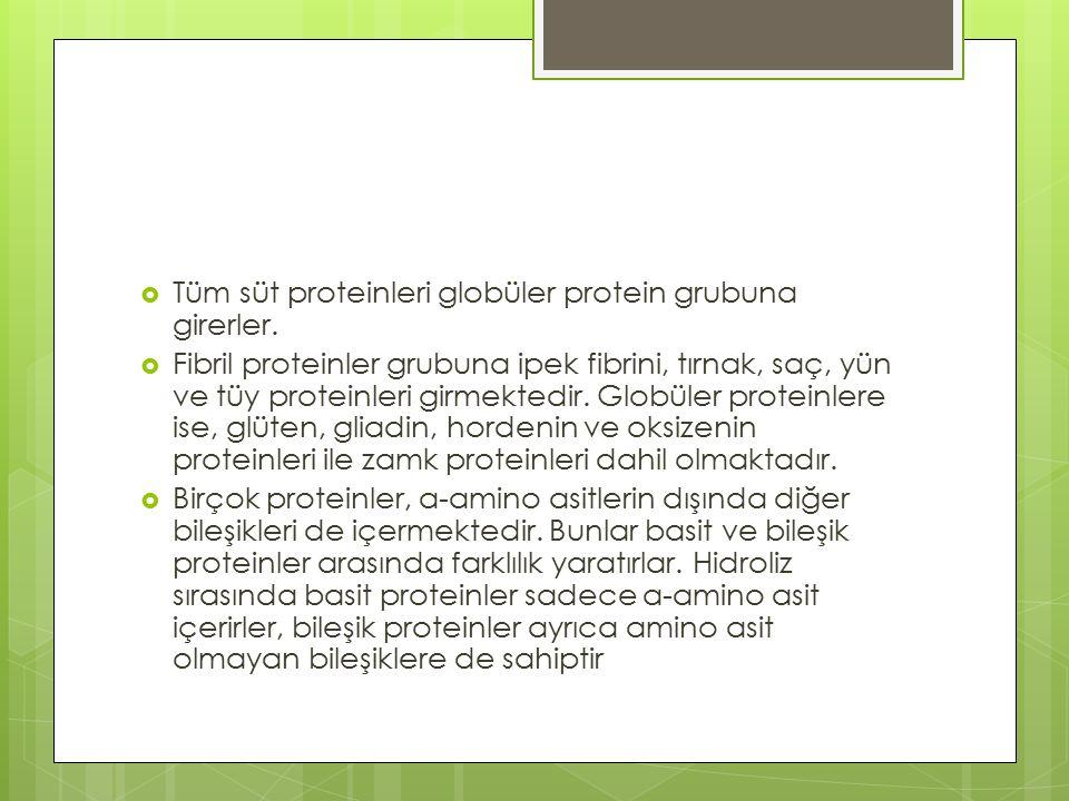  Tüm süt proteinleri globüler protein grubuna girerler.