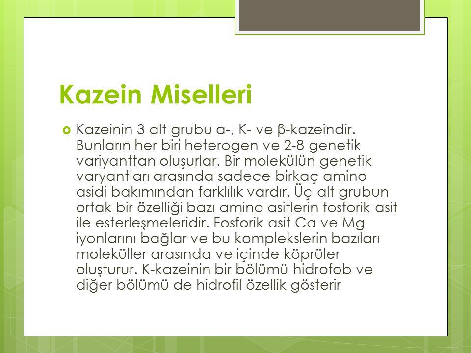 Kazein Miselleri  Kazeinin 3 alt grubu α-, K- ve β-kazeindir.
