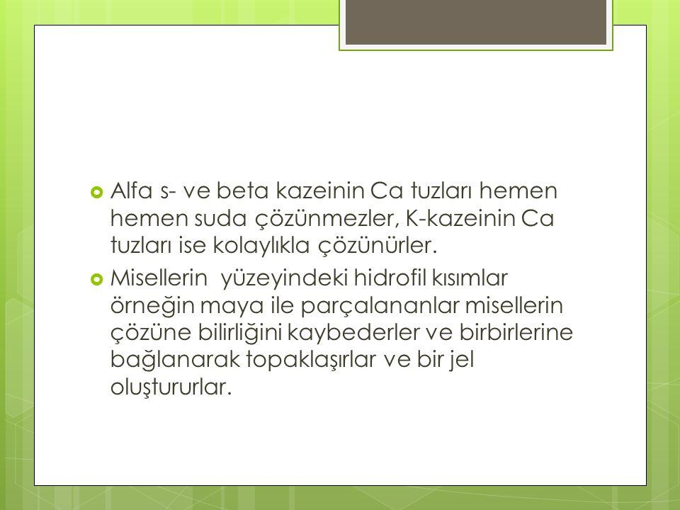  Alfa s- ve beta kazeinin Ca tuzları hemen hemen suda çözünmezler, K-kazeinin Ca tuzları ise kolaylıkla çözünürler.