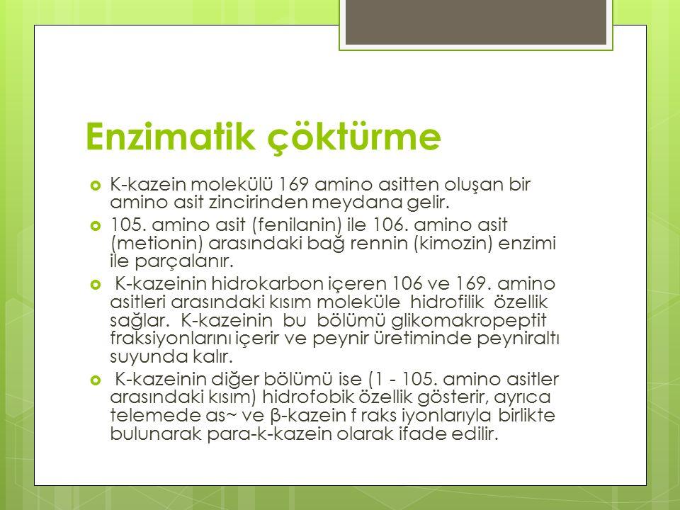 Enzimatik çöktürme  K-kazein molekülü 169 amino asitten oluşan bir amino asit zincirinden meydana gelir.