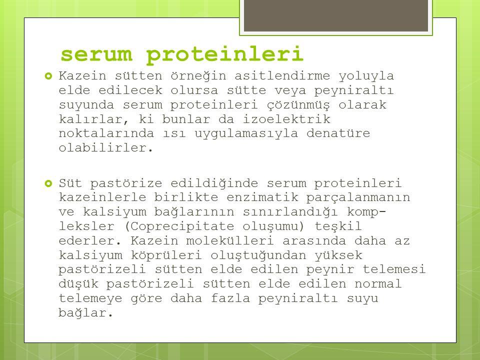 serum proteinleri  Kazein sütten örneğin asitlendirme yoluyla elde edilecek olursa sütte veya peyniraltı suyunda serum proteinleri çözünmüş olarak kalırlar, ki bunlar da izoelektrik noktalarında ısı uygulamasıyla denatüre olabilirler.