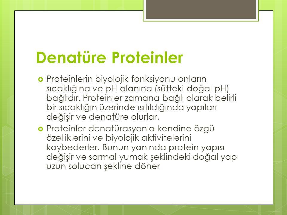 Denatüre Proteinler  Proteinlerin biyolojik fonksiyonu onların sıcaklığına ve pH alanına (sütteki doğal pH) bağlıdır.