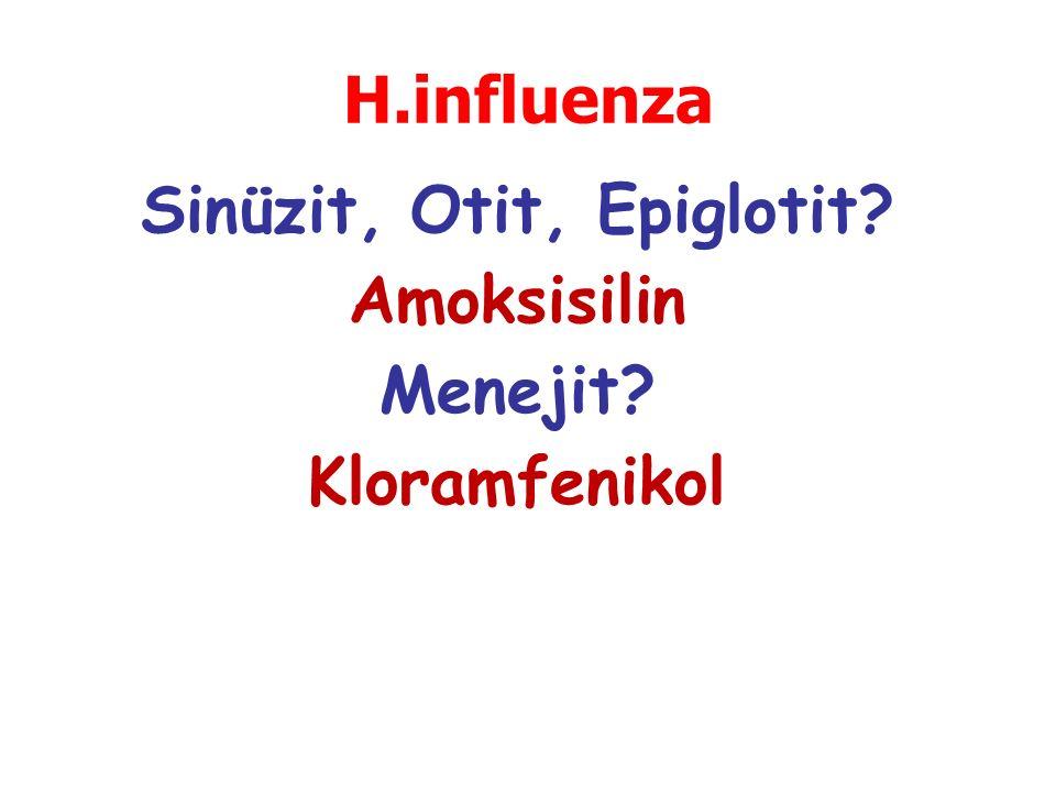 Sinüzit, Otit, Epiglotit? Amoksisilin Menejit? Kloramfenikol H.influenza