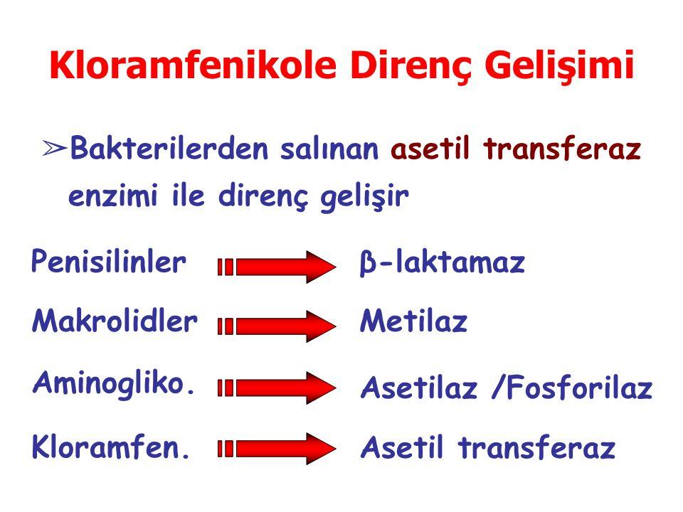 Kloramfenikole Direnç Gelişimi ➢ Bakterilerden salınan asetil transferaz enzimi ile direnç gelişir Penisilinler Makrolidler β-laktamaz Metilaz Aminogliko.